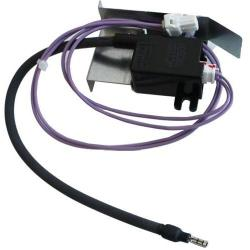 100074640 IGNITER ASSEMBLY (319143-479)